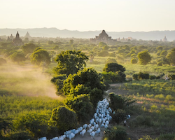 Private Transfer Gokteik/Nawngpeng to Bagan or Mandalay