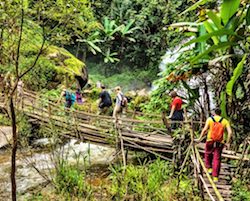 Full day natue and hill tribe trek Chiang Mai