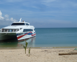 Joined Bus and Ferry Transfer from Phuket to Koh Samui, Koh Phangang or Koh Tao
