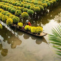3 Days Mekong Delta from HCM to Phu Quoc - private