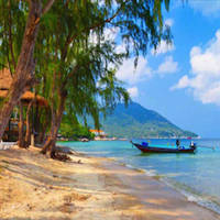 Join transfer Koh Tao pier to hotel and v.v.
